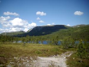 Norwegen2009 06-25 Blefjell-Flesberg