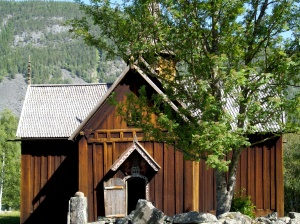 Norwegen2009 06-26 Flesberg-Al (41)