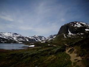 Norwegen2009 06-28 Al-Jungsdalshytta (15)