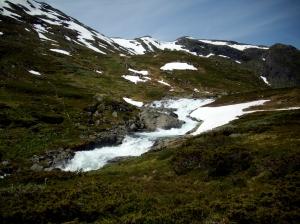 Norwegen2009 06-28 Al-Jungsdalshytta (28)
