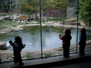 Jakob im Zoo
